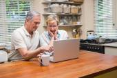 Senior couple using the laptop together — Foto Stock