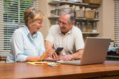 Senior couple working out their bills — Stock fotografie