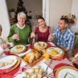 Portrait of happy family toasting at camera — Stock Photo #60887083