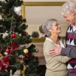 Senior couple decorating their christmas tree — Stock Photo #60888073