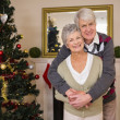 Senior couple hugging beside their christmas tree — Stock Photo #60888115
