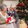 Senior couple sitting beside their christmas tree — Stock Photo #60888129