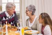 Portrait of grandparents and daughter at christmas  — Foto Stock