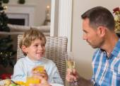 Portrait of father and son holding glass — Stock Photo