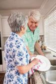 Senior couple washing the dishes — Stock Photo