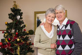 Senior couple smiling beside their christmas tree — Stock Photo