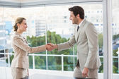 Two business workers shake hands — Stock Photo