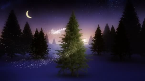 Magic light swirling around snowy christmas tree — Vidéo