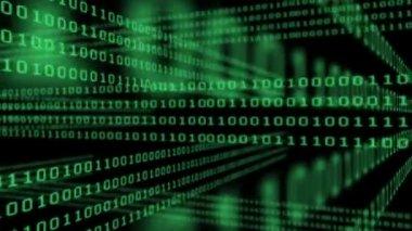 Binary code grid on black background — Stock Video