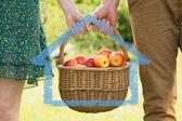 Basket of apples being carried — ストック写真