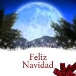 Composite image of feliz navidad — Stock Photo #62481523