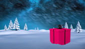 Composite image of pink present — Stock Photo