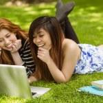 Happy women using laptop in park — Stock Photo #62653827