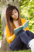 Student reading book against tree — Stock Photo