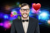 Geeky hipster holding rose between teeth — Stock Photo