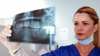 Smiling dentist studying an x ray — Stock Video