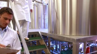 Team of brewers working together — Stock Video