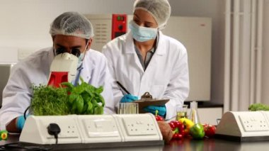 Scientists experimenting on food together — Stock Video