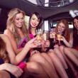 Happy friends drinking champagne in limousine — Stock Photo #65279327