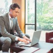 Cheerful handsome businessman working at laptop — Stock Photo #65285213