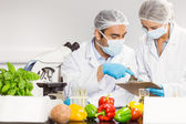Food scientists using the microscope for research — Stock Photo