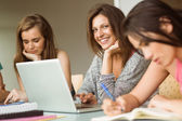 Smiling friends sitting studying and using laptop — Stock Photo
