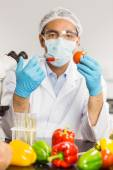 Food scientist injecting a tomato — Stock Photo