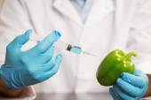 Food scientist injecting a pepper — Stock Photo