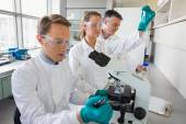 Team of scientists working together  — Stock Photo