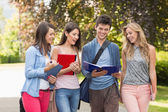 Happy students walking and chatting outside — Stock Photo