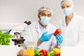 Food scientists looking at a pepper — Stock Photo