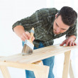 Worker using brush on wooden plank — Stock Photo #65553345