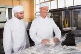 Baker looking his colleague kneading dough — Stock Photo