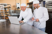 Smiling bakers working together on laptop — Stock Photo