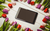Tulips forming frame — Stock Photo