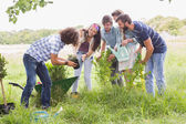 Happy friends gardening for the community — Stock Photo