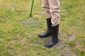 Man raking in his garden — Stock Photo