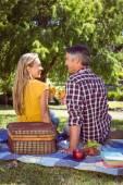 Couple having picnic in the park — Stock Photo