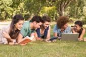 Happy friends in the park studying — Foto de Stock