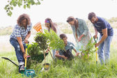 Happy friends gardening for the community — Stockfoto
