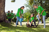 Environmental activists planting a tree — Stock Photo