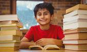 Portrait of boy reading book at desk — Photo