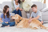 Siblings stroking dog — Stock Photo