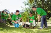 Environmental activists planting a tree in the park — Stock Photo