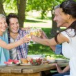 Happy couples toasting at the park — Stock Photo #69001175