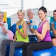 People working out with dumbbells in gym class — Stock Photo #69003871