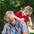 Boy hiding his fathers eyes with hands — Stock Photo #69004419