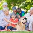 Family petting their dog in the park — Stock Photo #69004579