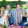 Happy couples toasting at the park — Stock Photo #69006559