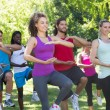 Fitness group doing tai chi in park — Stock Photo #69007015